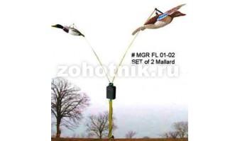 Летающая пара уток