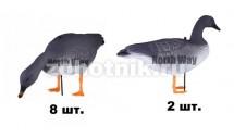 Комплект 10 чучел серого гуся-гуменника на стекловолоконной стойке от NORTH WAY серии Softplast