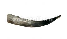 Горн охотничий (из рога) 40 см